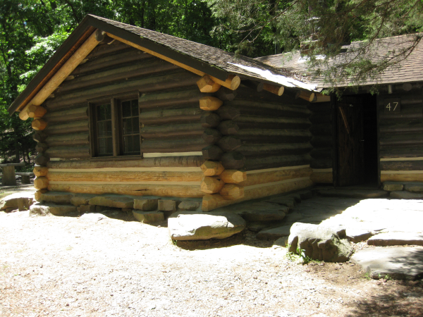 Log Home Repair done by IWR Co.